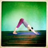 rachel Zinman Yoga Ishta Mala