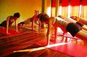 Rachel Zinman Yoga, Heather Elton Yoga, Alexa Dean Yoga, Nuria Reed