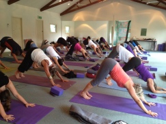 early morning intensive Rachel Zinman Yoga